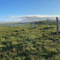 nice-fence_1-min